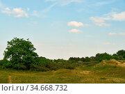Grüne Wiese und blauer Himmel mit wenigen weißen Wolken als Natur... Стоковое фото, фотограф Zoonar.com/Robert Kneschke / age Fotostock / Фотобанк Лори