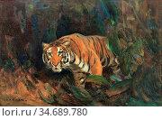 Swan Cuthbert Edmund - Tiger - British School - 19th Century. Стоковое фото, фотограф Artepics / age Fotostock / Фотобанк Лори