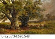 Turner George - Beech Trees near Ingleby Derbyshire - British School... Стоковое фото, фотограф Artepics / age Fotostock / Фотобанк Лори