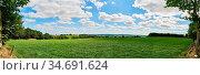 Grüne Wiese als Panorama Hintergrund mit einem blauen Himmel im Sommer. Стоковое фото, фотограф Zoonar.com/Robert Kneschke / age Fotostock / Фотобанк Лори