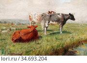 Wheelwright Rowland - Cows and Sheep in a Water Meadow - British ... Редакционное фото, фотограф Artepics / age Fotostock / Фотобанк Лори