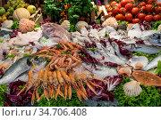 Umfangreiche und bunte Fischplatte zubereitet mit Salat, Obst und... Стоковое фото, фотограф Zoonar.com/Alfred Hofer / easy Fotostock / Фотобанк Лори