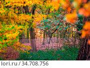 Wooden primitive fence in a park photographed in autumn. Стоковое фото, фотограф Zoonar.com/Pawel Opaska / easy Fotostock / Фотобанк Лори