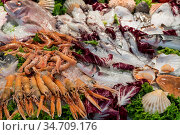 Fisch, Makrelen und Muscheln auf leckerer Platte mit Salat frisch... Стоковое фото, фотограф Zoonar.com/Alfred Hofer / easy Fotostock / Фотобанк Лори