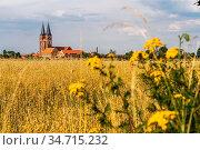 Landwirtschaft rund um das Kloster Jerichow mit Stiftskirche in Jerichow... Стоковое фото, фотограф Peter Schickert / age Fotostock / Фотобанк Лори