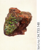 Ruskin John - Study of a Piece of Brick to Show Cleavage in Burnt... Редакционное фото, фотограф Artepics / age Fotostock / Фотобанк Лори