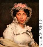 Bodinier Guillaume - Portrait De Mme Marguerite Julie Morel - French... Стоковое фото, фотограф Artepics / age Fotostock / Фотобанк Лори