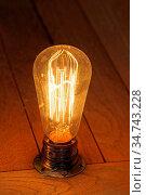 Vintage Style Antique Edison Incandescent Light Bulb. Стоковое фото, фотограф Zoonar.com/Marko Beric / easy Fotostock / Фотобанк Лори