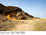 Naturschutzgebiet Morsum Kliff, Steilkueste, Morsum, Sylt, Nordfriesische... Стоковое фото, фотограф Zoonar.com/Wirth / easy Fotostock / Фотобанк Лори