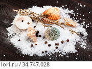 Various shells and coarse grained Sea Salt and peppercorns on dark... Стоковое фото, фотограф Zoonar.com/Valery Voennyy / easy Fotostock / Фотобанк Лори