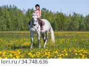 Pretty European little girl rides a white horse. Стоковое фото, фотограф EugeneSergeev / Фотобанк Лори
