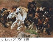 Busschere Constant De - Wilde Paarden - Belgian School - 19th Century. (2020 год). Редакционное фото, фотограф Artepics / age Fotostock / Фотобанк Лори