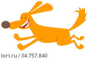 Cartoon Illustration of Happy Running Dog Animal Character. Стоковое фото, фотограф Zoonar.com/Igor Zakowski / easy Fotostock / Фотобанк Лори