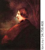 Bohm Wolfgang - Portrait of Ferenc Pulszky - Hungarian School - 19th... Стоковое фото, фотограф Artepics / age Fotostock / Фотобанк Лори