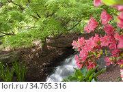 Small waterfall in a garden setting in the springs. Стоковое фото, фотограф Joseph De Sciose / age Fotostock / Фотобанк Лори