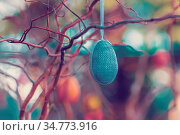 Hanging Easter eggs on tree with soft focus bokeh and color toned... Стоковое фото, фотограф Zoonar.com/Artush Foto / easy Fotostock / Фотобанк Лори