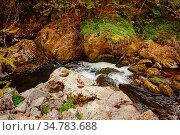 The Devin River Valley in the Western Rhodopes. Стоковое фото, фотограф Zoonar.com/Sergej Razvodovskij / easy Fotostock / Фотобанк Лори