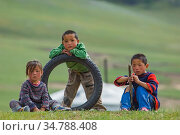 Nomadic Mongolian Children, in the backcountry of Mongolia. August 2005. Стоковое фото, фотограф Jeff Foott / Nature Picture Library / Фотобанк Лори