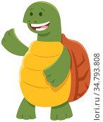Cartoon Illustration of Funny Turtle or Tortoise Comic Animal Character... Стоковое фото, фотограф Zoonar.com/Igor Zakowski / easy Fotostock / Фотобанк Лори