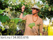 Side view of handsome young man in hat toching vine leaves in garden... Стоковое фото, фотограф Zoonar.com/STEFANO CAVORETTO / easy Fotostock / Фотобанк Лори