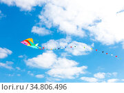 Colorful kite on a blue sky with white clouds. Стоковое фото, фотограф Zoonar.com/Matej Kastelic / easy Fotostock / Фотобанк Лори