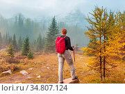 Hike in the autumn mountains. Fall season theme. Стоковое фото, фотограф Zoonar.com/Galyna Andrushko / easy Fotostock / Фотобанк Лори