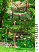 An image of some stairs in the green garden. Стоковое фото, фотограф Zoonar.com/magann / easy Fotostock / Фотобанк Лори
