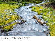 Beautiful natural scenery, streams in the forest, slow shutter shooting... Стоковое фото, фотограф Zoonar.com/zhang zhiwei / easy Fotostock / Фотобанк Лори