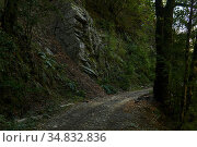 Dirt road on a steep slope in a wooded mountainous area. Стоковое фото, фотограф Евгений Харитонов / Фотобанк Лори