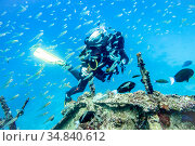 Girl diver in flock of fish clinging to the rail of a sunken ship to hold out against the underwater current. Стоковое фото, фотограф Сергей Фролов / Фотобанк Лори