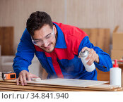 The yooung repairman carpenter working with paint painting. Стоковое фото, фотограф Elnur / Фотобанк Лори