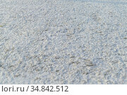Green grass covered with snow (2019 год). Редакционное фото, фотограф Михаил Решетников / Фотобанк Лори
