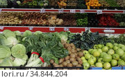 View of showcase with fresh ripe fruits and vegetables in greengrocery. Стоковое видео, видеограф Яков Филимонов / Фотобанк Лори