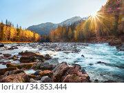 Река Кумир на Алтае осенью / Altai river Kumir. Стоковое фото, фотограф Serg Zastavkin / Фотобанк Лори