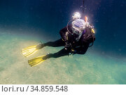 Diver rising to the surface from the depths of the sea. Стоковое фото, фотограф Сергей Фролов / Фотобанк Лори