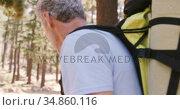 Hiker couple walking through forest. Стоковое видео, агентство Wavebreak Media / Фотобанк Лори