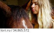 Woman stroking horse in stable 4k. Стоковое видео, агентство Wavebreak Media / Фотобанк Лори
