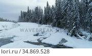 Stream flowing through snowy forest 4k. Стоковое видео, агентство Wavebreak Media / Фотобанк Лори