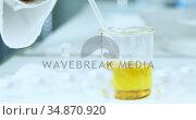 Scientist experimenting in laboratory 4k . Стоковое видео, агентство Wavebreak Media / Фотобанк Лори
