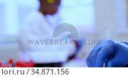 Laboratory technician working in blood bank 4k. Стоковое видео, агентство Wavebreak Media / Фотобанк Лори