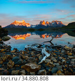 Towers and Central Massif reflected in Lago Pehoe at sunrise. Torres del Paine National Park, Patagonia, Chile. November 2018. Стоковое фото, фотограф Nick Garbutt / Nature Picture Library / Фотобанк Лори