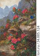 Stainer-Knittel Anna - Alpenblumen - Austrian School - 19th Century. (2020 год). Редакционное фото, фотограф Artepics / age Fotostock / Фотобанк Лори