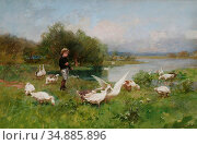 Chialiva Luigi - Young Boy Tending Geese - Swiss School - 19th Century... Редакционное фото, фотограф Artepics / age Fotostock / Фотобанк Лори