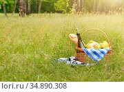 Picnic basket with fruits wine and bread on the grass with blanket... Стоковое фото, фотограф Olena Mykhaylova / easy Fotostock / Фотобанк Лори