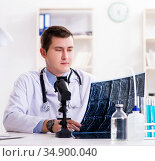 Male doctor looking at lab results in hospital. Стоковое фото, фотограф Elnur / Фотобанк Лори
