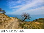 Dirt winding road to the lighthouse. Стоковое фото, фотограф Юрий Бизгаймер / Фотобанк Лори