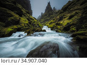 River flowing through Pakgil Canyon, Vik, Iceland. September 2019. Стоковое фото, фотограф Guy Edwardes / Nature Picture Library / Фотобанк Лори