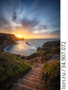 Steps leading down to Man O'War Bay at sunrise. Lulworth, Dorset, England, UK. March 2020. Стоковое фото, фотограф Guy Edwardes / Nature Picture Library / Фотобанк Лори