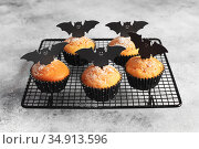 Halloween pumpkin muffins in black capsules decorated with cardboard bats. Festive Halloween cupcakes. Close-up view of delicious spooky halloween muffins on the grey table. Halloween recipes. Стоковое фото, фотограф Nataliia Zhekova / Фотобанк Лори