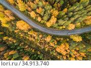 Вид сверху на автодорогу в осеннем лесу. Карелия. Стоковое фото, фотограф Сергей Цепек / Фотобанк Лори